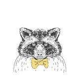 Hand drawn  wild forest deer raccoon. Royalty Free Stock Image