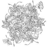 Hand drawn wild roses set Royalty Free Stock Photos