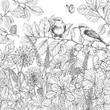 Hand drawn wildflowers, butterflies and birds. Stock Photos