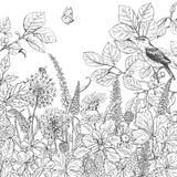 Hand drawn wildflowers, butterfly and bird. Hand drawn floral elements. Black and white flowers, plants, butterfly and sitting songbird on branch. Monochrome Stock Photos