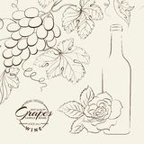 Hand drawn wine label Stock Photography