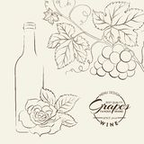 Hand drawn wine label Stock Image