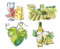 Hand drawn  wine Stock Images