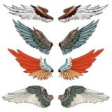 Hand drawn wing vector set.colorful Sticker wing tattoo  Stock Photo