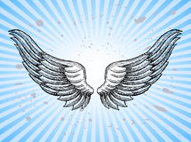 Hand Drawn Wings. With splashes and sunburst background Royalty Free Stock Image