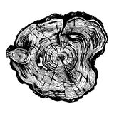 Hand drawn wood cut. Hand drawn illustration of wood saw cut. Highly detailed ink art in engraved style stock illustration