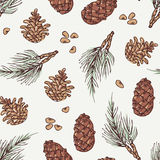 Hand drawn wreath and pine cone winter seamless Royalty Free Stock Images