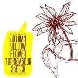 Hand drawn yellow flower topinambour sketch Stock Photos