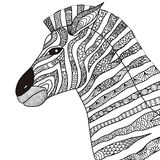 Hand drawn zebra zentangle style for coloring book,tattoo,t shirt design,logo. Hand drawn zebra zentangle style for coloring book,tattoo,  t shirt design,logo Royalty Free Stock Images