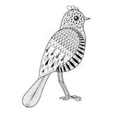 Hand drawn zentangle artistic Bird for adult antistress coloring Royalty Free Stock Images