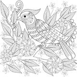 Hand drawn zentangle bird sitting on blooming tree branch for ad Stock Photography