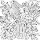 Hand drawn zentangle exotic tropical bird sitting  Royalty Free Stock Photo