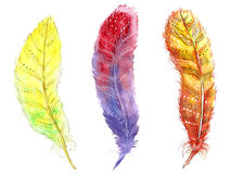 Hand drawn zentangle feather on white background. Set decorative watercolor handdrawn feathers on white background. Vintage tribal ethnic feather. Isolated Royalty Free Stock Photos