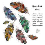 Hand drawn zentangle feathers on white background. Vector illustration made of feather zen doodles. Can be used for greeting card, packaging,invitations Royalty Free Stock Image