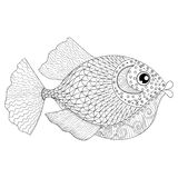Hand drawn zentangle Fish for adult anti stress coloring pages, Royalty Free Stock Image