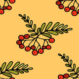 Hand drawn Zentangle pattern wiht romanberry. Hand drawn Zentangle pattern with rowanberry. Zen-tangle style. Background for cards, invitation, pattern fills Stock Image