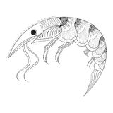 Hand drawn zentangle Shrimp for adult anti stress coloring pages. Monochrome  post card, mehendi t-shirt print,  logo icon. Sea animal illustration in doodle Stock Images