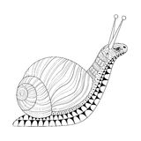 Hand drawn zentangle Snail for adult anti stress colouring pages Stock Photography