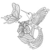 Hand Drawn Zentangle Tribal Flying Butterfly, Hummingbird In Hibiskus For Adult Anti Stress Coloring Pages, T-shirt Print. Stock Photo