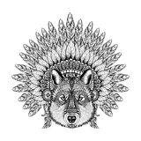 Hand Drawn Zentangle Wolf in Feathered War bonnet, high datailed Stock Photography