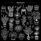 Hand-drawn zwart-wit installaties in potten op zwarte achtergrond vector illustratie