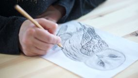 Hand draws the belly of an owl. The artist`s hand draws and shades the owl`s belly on a sheet of paper stock video footage