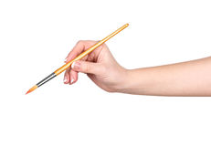 Hand draws a brush on an Stock Photography