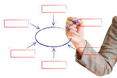 Hand draws a graph isolated on a white. Background Vector Illustration