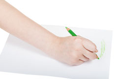 Hand draws by green pencil on sheet of paper Royalty Free Stock Photo