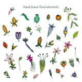 Hand drog blom- beståndsdelar för tappning Vektor Illustrationer