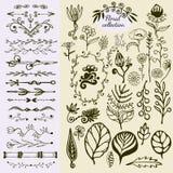 Hand drog blom- beståndsdelar för tappning Stor uppsättning av lösa blommor, sidor, virvlar, gräns dekorativa klotterelement Arkivfoton