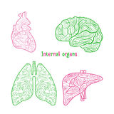 Hand drog inre organ Arkivbild