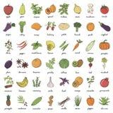 Hand drog klotterfrukter och grönsaker Royaltyfria Bilder