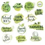 Hand drog vattenfärgetiketter och emblem för organisk mat Royaltyfri Bild