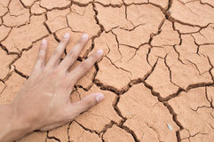 Hand on Dry soil. Dry soil  background  color asian Stock Photos