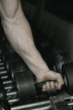 Hand on dumbbells. Hand picking up a dumbbell stock images