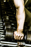 Hand on dumbbells. Hand picking up a dumbbell stock photo