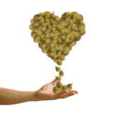 Hand with Durian heart image isolated Royalty Free Stock Image