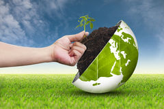 Hand and eco world on grass sky background 2 Royalty Free Stock Images