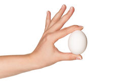 Hand with egg Royalty Free Stock Photography