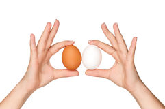 Hand with egg Royalty Free Stock Image