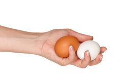 Hand with egg Royalty Free Stock Images