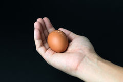 Hand with egg Royalty Free Stock Photo