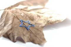 hand embroidery on sycamore leaf in front of white background - star theme - autumn / winter decoration royalty free stock photos
