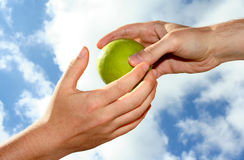 Hand en appel Stock Foto