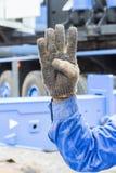 Hand en vingerteken Stock Afbeeldingen