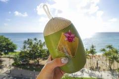 Hand ergriff einen Kokosnuss-förmigen Behälter auf dem Hintergrund von waikiki Strand, O-'ahu, Hawaii lizenzfreies stockbild