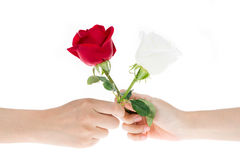 2 hand exchange flowers to each other Royalty Free Stock Image