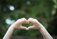Hand expression on heart-shaped bokeh background that blurts natural-style ring tones. Show the world you love family love between stock photos