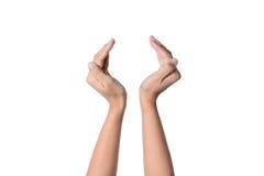 Hand för affärsman Royaltyfri Foto